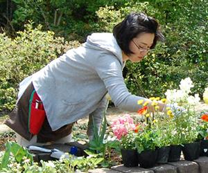 園芸療法講師:山崎 陽子先生